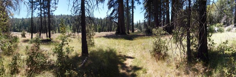 pano meadows