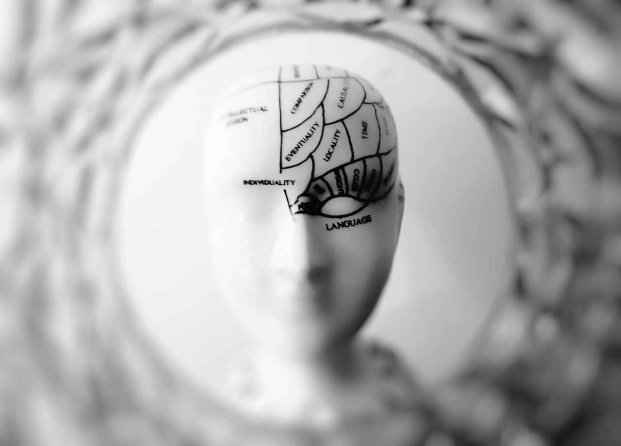 10 Misconceptions About the Brain
